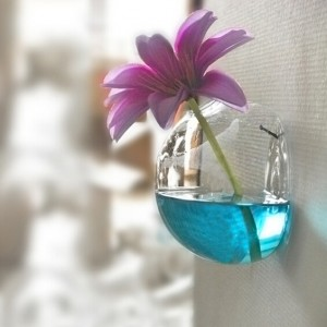 Wall transparent glass vase hydroponic flower half ball vase glass crafts fish tank bowl